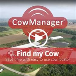 Find my Cow easy