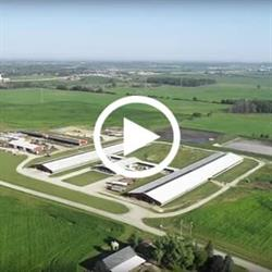 Virtual Farm Tour of Paulus Dairy LLC