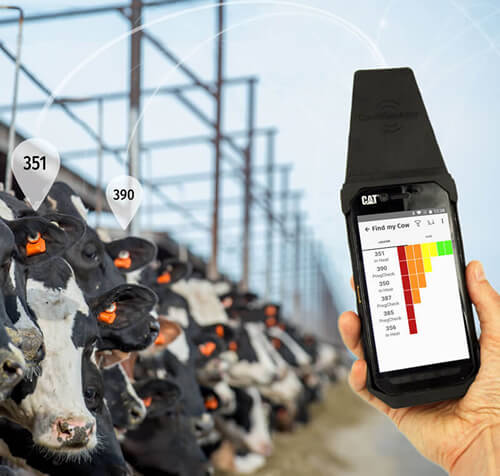 Find your cows easily using the CowManager Find my Cow locator